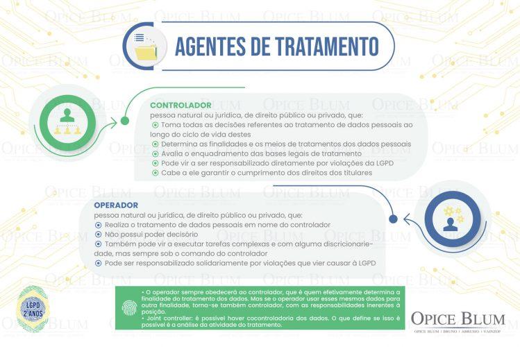 LGPD_agentes de tratamento-03 (1) (2)