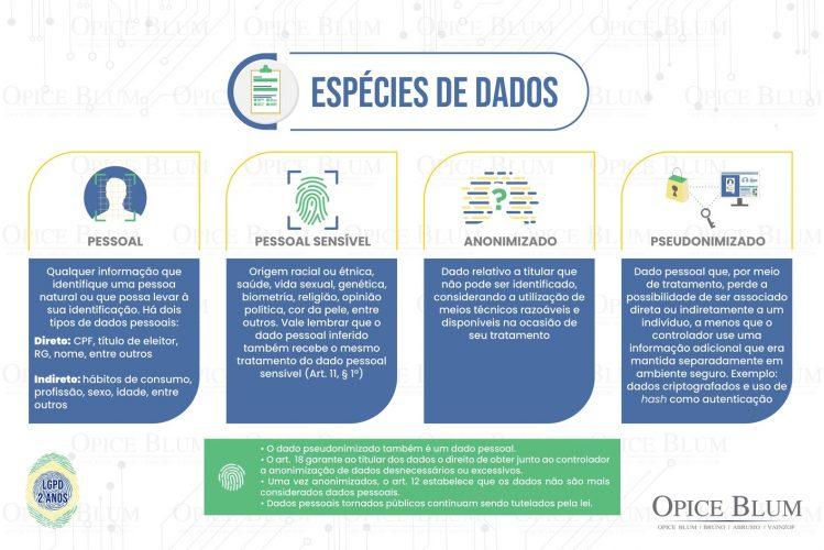 LGPD_espécies_de_dados-02 (3)